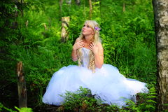 The bride in wood Stock Photography