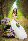 The bride in the wood Royalty Free Stock Image