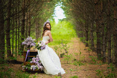 The bride in the wood Royalty Free Stock Photo