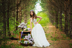 The bride in the wood Royalty Free Stock Images