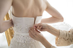 Bride that you are shall we put the dress Royalty Free Stock Images