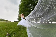 The bride. Young girl in the dress of the bride in a summer park Stock Image