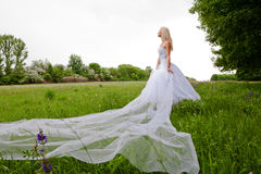 The bride. Young girl in the dress of the bride in a summer park Stock Photos