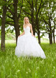 The bride. Young girl in the dress of the bride in a summer park Royalty Free Stock Photos