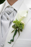 Bridegroom. Flower on suit of bridegroom royalty free stock image