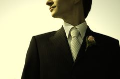 Bridegroom Stock Photography