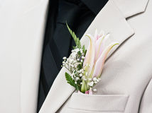 Bridegroom. Groom's wedding suit with boutonniere made of flower and green leaves Stock Images