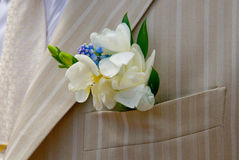 bridegroom boutonniere Стоковая Фотография