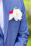 Bridegroom. Boutonniere groom with nice white wedding accesirise Royalty Free Stock Images