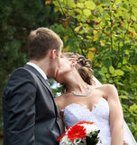 Bridegroom and Bride. Royalty Free Stock Images
