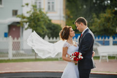 Bridegroom and bride with very long bridal veil Stock Photography