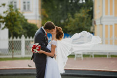 Bridegroom and bride with very long bridal veil Royalty Free Stock Images