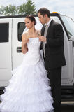 Bridegroom and bride on the wedding in park. Bridegroom and beautiful bride in white on the wedding in park stock image