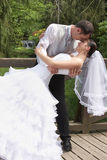 Bridegroom and bride on the wedding in park. Bridegroom and beautiful bride in white on the wedding in park stock photography