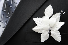 Bridegroom and buttonhole Royalty Free Stock Images