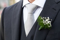 Groom Royalty Free Stock Photo