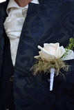 Bridegroom flower brooch - detail. Close-up of the flower, a rose in the groom`s breast pocket royalty free stock images