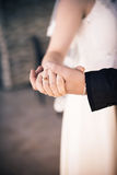 Bridegroom Holds the Hand of the Bride Stock Images