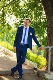 Bridegroom with veil smiling Royalty Free Stock Images