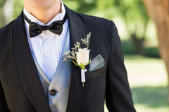Bridegroom wearing boutonniere in garden. Midsection of bridegroom wearing boutonniere in garden stock image