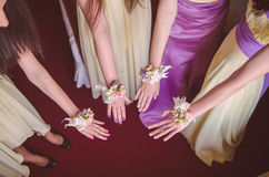 Bridemaids showing wrist corsage Royalty Free Stock Photos