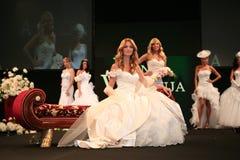 Brides Stock Image