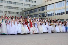 Brides. Greater group of beautiful happy brides Stock Images