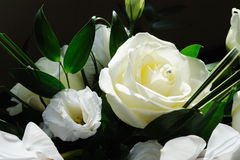 Brides bouquet. Closeup of rose on wedding day Stock Image