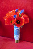 Brides bouquet on the red background. Red tulips and blue iris Royalty Free Stock Image