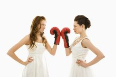 Brides with boxing gloves. Stock Photo