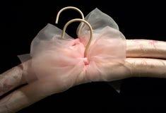 Brides de fixation en soie Image stock