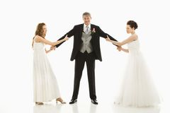 Brides fighting over groom. Royalty Free Stock Photography