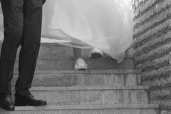 Brides go out stairs together and hold hands. royalty free stock photography