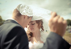 Brides and the groom under a veil Stock Image