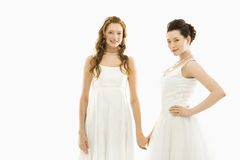 Brides holding hands. Stock Images