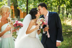 The brides kissing in the park Royalty Free Stock Photography