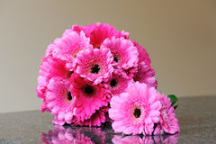 Brides Pink Flowers Stock Photography