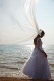 Brides silhouette Royalty Free Stock Photo