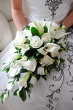 Brides white roses. Stock Photo
