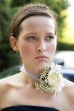 Bridesmade. Stock Image