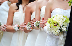 Bridesmaid. And bride holding their hands together Stock Image