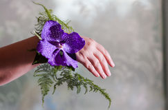 Bridesmaid hand decoration royalty free stock photography