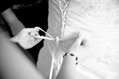 Bridesmaid helping to dress up Stock Image