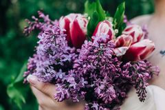 Bridesmaid holding purple wedding bouquet against dress stock images