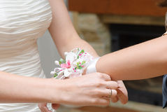 Bridesmaid Stock Photography