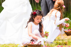 Bridesmaids свадьбы с корзиной лепестка цветка Стоковое Фото