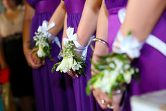 bridesmaids Fotografie Stock