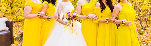 bridesmaids fotografie stock libere da diritti
