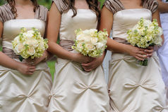 Bridesmaids Royalty Free Stock Image