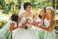 Bridesmaids admiring of bride Stock Image